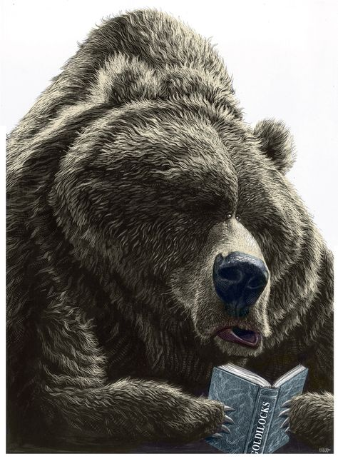 Remarkable Illustrations by Ricardo Martinez A reading bear