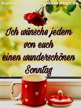 Guten Morgen Sonntag Bilder Kostenlos - #bilder #guten #kostenlos #morgen #sonntag - #new