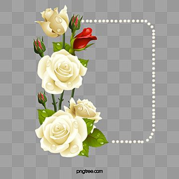 White Roses With Pearls Card White Roses Creative Cards Rose Border Png Transparent Clipart Image And Psd File For Free Download Creative Cards White Roses Golden Wedding Anniversary Card