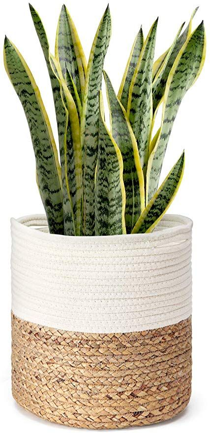 Amazon Com Mkono Cotton Rope Plant Basket With Water Hyacinth Modern Indoor Planter Up To 10 Inch Pot Woven Storage Org Plant Basket Indoor Planters Planters