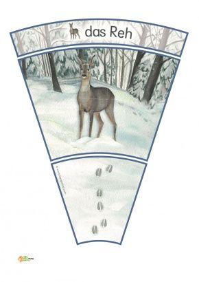 3 Kindergarten Kigaportal Winter Spuren Schnee Waldtiere Reh Dachs Fuchs Eichhoernchen Schneehase Kind Foerster Waldtiere Tierspuren Im Schnee Reh
