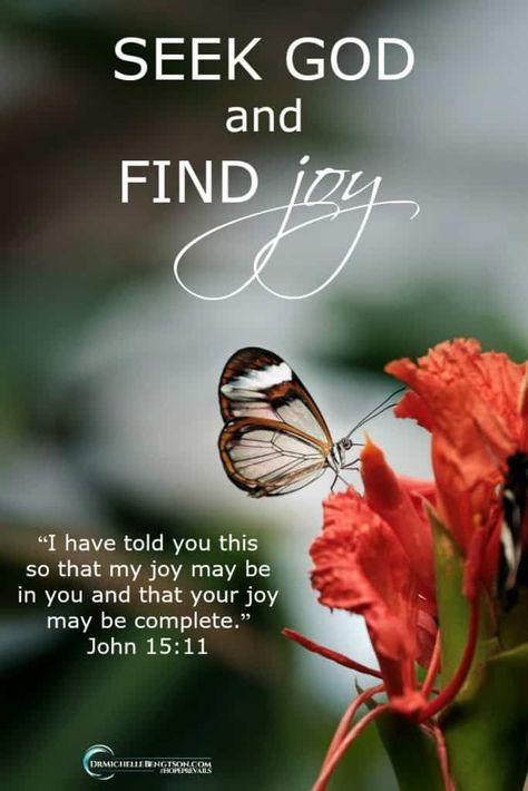 Are You Seeking Joy? | Dr. Michelle Bengtson