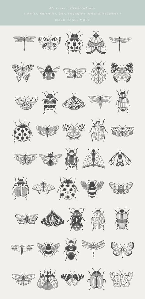 Beetles, Bugs & Butterflies is a collection of 45 hand-drawn & vectorised insect illustrations. Each illustration is provided as an outline/line-drawing, with Illustration Papillon, Butterfly Illustration, Plant Illustration, Outline Illustration, Black And White Illustration, Mini Tattoos, Cute Tattoos, Small Tattoos, Tatoos