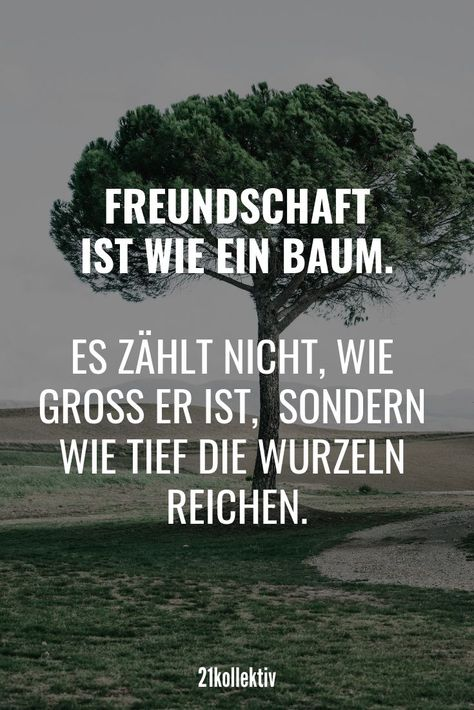 Freundschaft ist wie ein Baum. Es zählt nicht wie groß er ist, sondern wie tief die Wurzeln reichen... | Mehr #Lebensweisheiten und schöne #Sprüche über das Leben, die Liebe & das Glück findest du auf auf 21kollektiv.de // Schau doch mal vorbei!