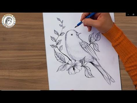 How To Draw A Bird With Pencil كيف أرسم عصفور بقلم الرصاص Youtube Drawing For Beginners Pencil Drawings Dreamcatcher Tattoo