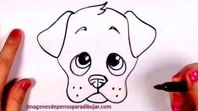 Faciles Dibujos Tiernos De 4 Caritas De Perros Para Dibujar Perritos Para Dibujar Perros Para Dibujar Faciles Perros En Caricatura