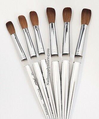 Acrylic Nail Brush Manicure Powder Petal Kolinsky Silver Handle Crimped Ebay In 2020 Acrylic Nail Brush Acrylic Nail Supplies Nail Brushes