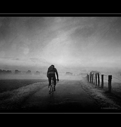 Die 100+ besten Bilder zu Fahrrad in 2020 | fahrrad
