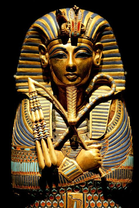 tutankhamuns life The answer might lie in the story of tut's life and death his premature demise in about 1322 bc likely shocked his subjects—and left them deeply apprehensive about their future.