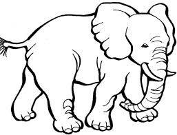 Hasil Gambar Untuk Gambar Mewarnai Binatang Sapi Warna Binatang