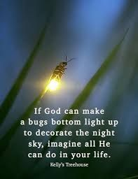 If God Can Make A Bugs Bottom Light Up Google Search Life Light Up Life Is Beautiful