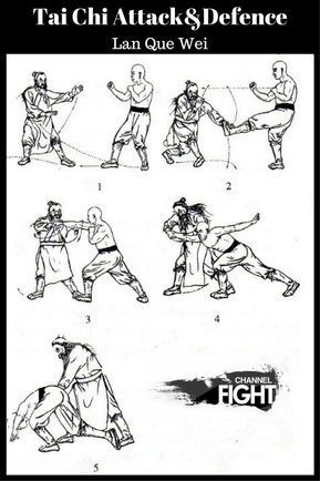Tai Chi attack and defence-Lan Que Wei | Draw | Tai chi