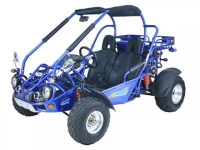 Trailmaster 300 XRX 300cc Go Kart for sale    Go Karts   Go