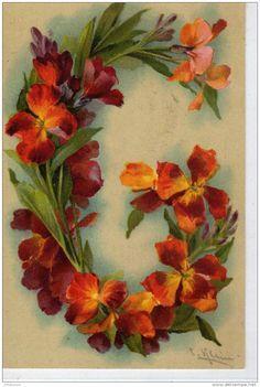 Fiori 6 Lettere.Catherine Klein Artist Fiori Dipinti Fiori E Disegno Fiori