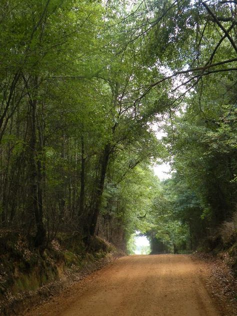 Red Clay Dirt Roads Looks Exactly Like The Road To My