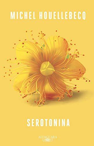 Serotonina Michel Houellebecq Literatura Francesa Ficcao Livros Para Ler