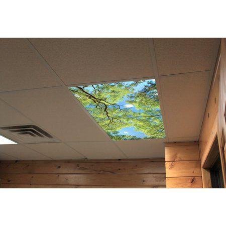 Fluorescent Decorative Ceiling Light