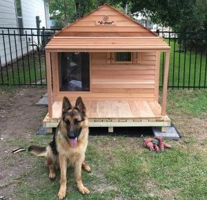 Godzilla Dog House Custom Cedar Dog House Custom Dog Houses