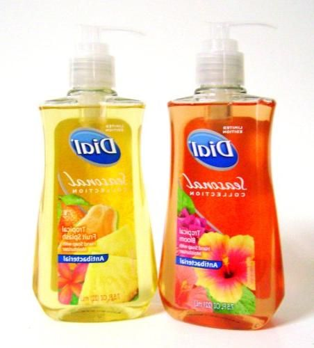 Dial Seasonal Collection Antibacterial Liquid Hand Soap With