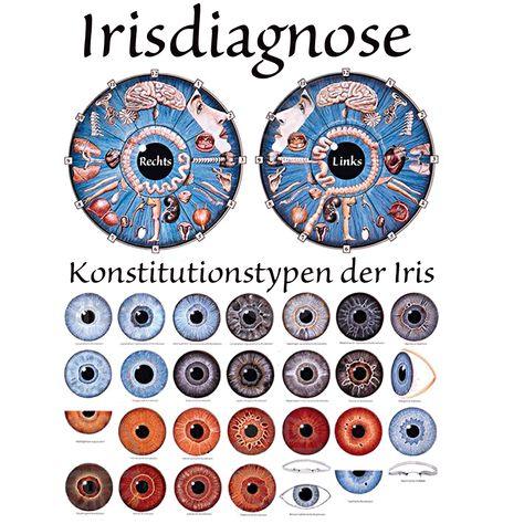 Augendiagnose oder Irisdiagnostik Das Vorhandensein sogenannter Reflexzonen auf der Fußunterseite, d.h. Areale, welche mit den verschiedensten inneren Organgen des menschlichen Körpers sowie seiner Extremitäten in Verbindung stehen, ist heute - ursprünglich stammend aus der TCM (Traditionellen Chinesischen Medizin) zur…
