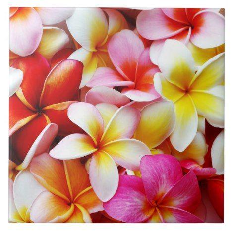 Pin On Hawai