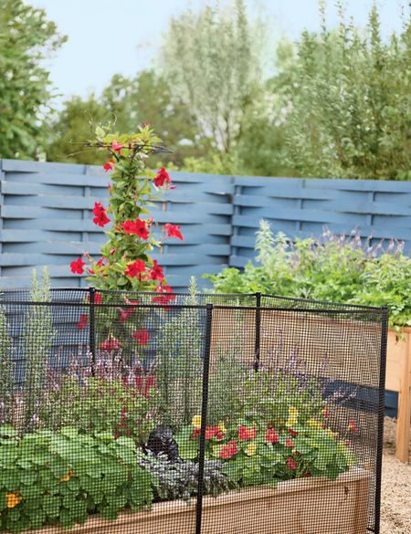 Fence Stakes With Clips 4 Ft Or 5 Ft Posts Gardener S Supply