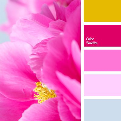 Bright Pink Color Matching Crimson Fuchsia Pale Purple Pastel Blue Colors And Contrasting Periwinkle