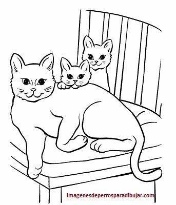 Bonitos Dibujos Para Imprimir De Perros Y Gatos Para Pintar