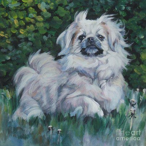 Tibetan Spaniel In Field By Lee Ann Shepard Dog Art Spaniel Art