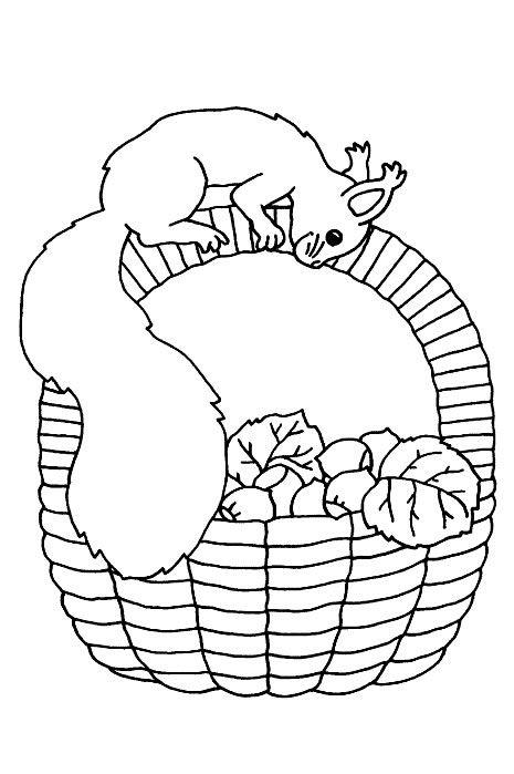 Animales 164 Dibujos Faciles Para Dibujar Para Ninos Colorear Disenos De Bordados Dibujos Para Colorear Disenos De Bordados A Maquina