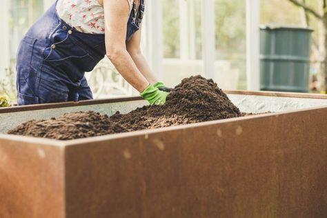 Hochbeet Auffullen Hochbeet Garten Kompost