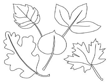 Leaves Coloring Page For Spring Summer Or Autumn Fall Coloring Page Leaf Coloring Page Fall Leaves Coloring Pages Fall Coloring Pages