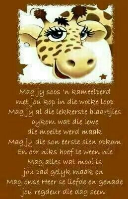 13 Gelukwensings Ideas Afrikaanse Quotes Birthday Wishes Afrikaans Quotes