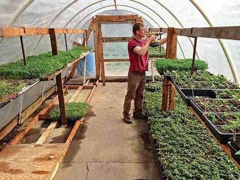Urban Backyard Farming for Profit | MOTHER EARTH NEWS