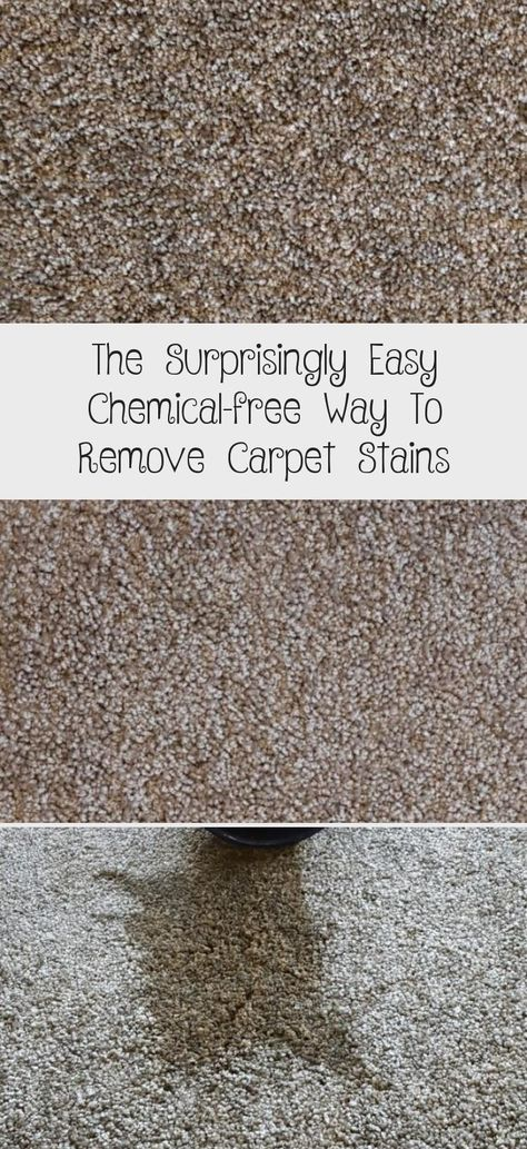 The Surprisingly Easy Chemical Free Way To Remove Carpet Stains In 2020 Stain Remover Carpet Carpet Stains How To Clean Carpet