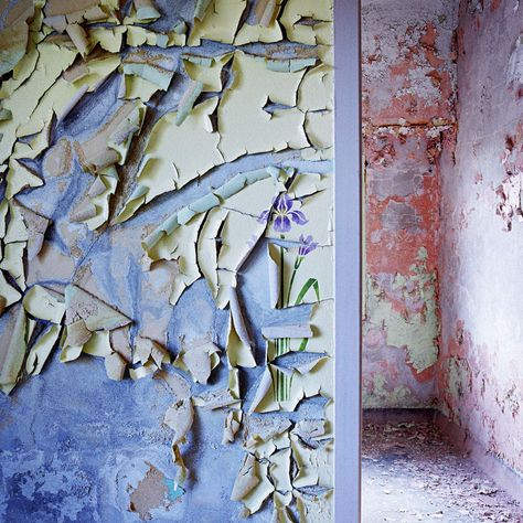Peeling Paint Decorations, Rochester Psychiatric Center -