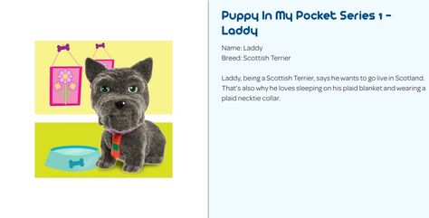 Puppy In My Pocket Series 1 Laddy The Scottish Terrier