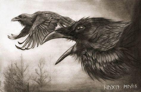 Raven, Crow, et Corbacs  Df4d518f784442e51474480efa42a9f0--norse-vikings-viking-art