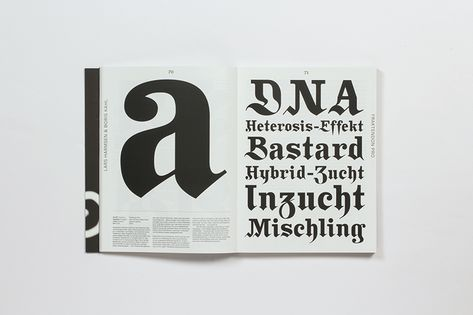 Neue Schriften New Typefaces Konzeption Museum Mainz Und