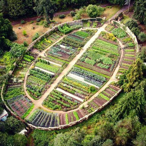Kitchen Garden | Gravetye Manor Sussex