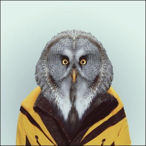 Fotograaf Yago Partal hield aan een jeugd vol verhalen over de wilde natuur een grote dierenliefde over, en die blijkt ook uit zijn nieuwe reeks 'Zoo Portraits'. Elk beeld is een combinatie van een foto van een dier en een modieuze outfit.