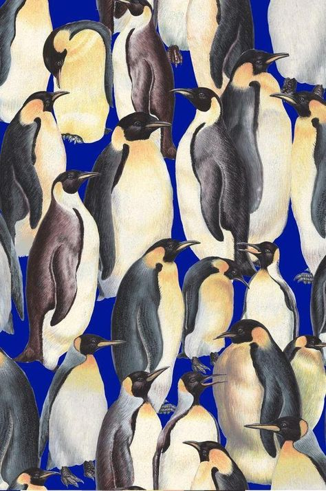 Stoff Tiermotive - Living Wonders - Pinguine - ein Designerstück von Der-Stoffstand bei DaWanda