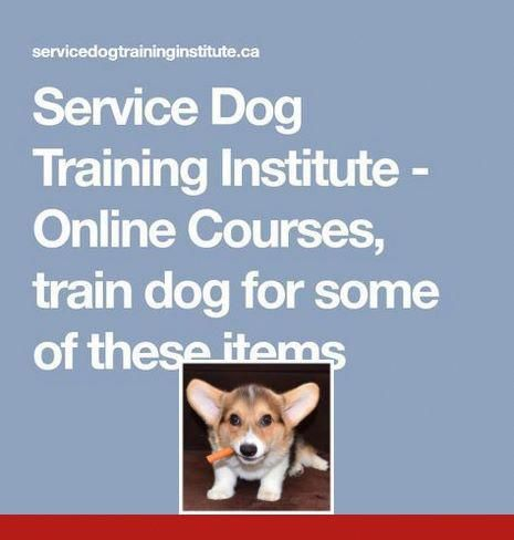 Pin By Sara Paulik On Dog Training Dog Training Treats Service