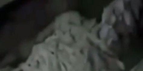 ΒΙΝΤΕΟ: Νέα θεωρία συνωμοσίας: Πράκτορες της «Κα Γκε Μπε» εξετάζουν εξωγήινη μούμια που βρέθηκε σε Αιγυπτιακό τάφο