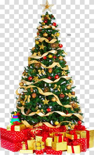 Christmas Tree Gift Christmas Tree Transparent Background Png Clipart Christmas Tree Background Christmas Tree With Gifts Tree Gift