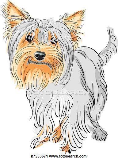 Clipart Of Vector Pedigreed Dog Yorkshire Terrier Yorkshireterrier Yorkie Yorkshire Terrier Yorkie Terrier Terrier Breeds