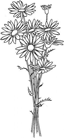 10 Transcendent Satin Stitch Flower Hand Embroidery Ideas Flower Coloring Pages Flower Drawing Coloring Pages
