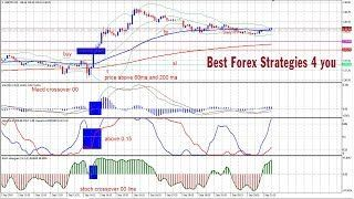 Learn To Trade Forex Forex Strategy Forex Forex Trading Training