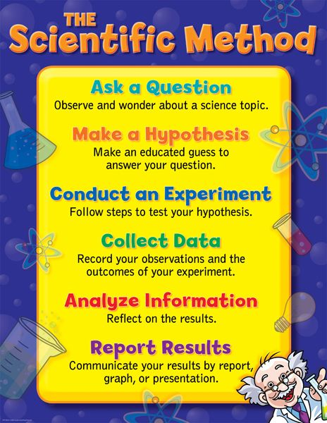 scientific method worksheets middle school | Vocabulary Essential Questions