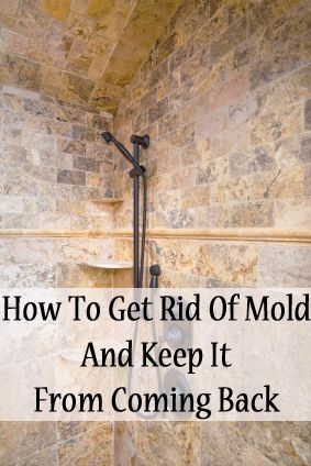 How To Get Rid Of Mold And Keep It From Coming Back Mix 1 Part Hydrogen Peroxide Water Spray Let Sit For Hour Then Scrub